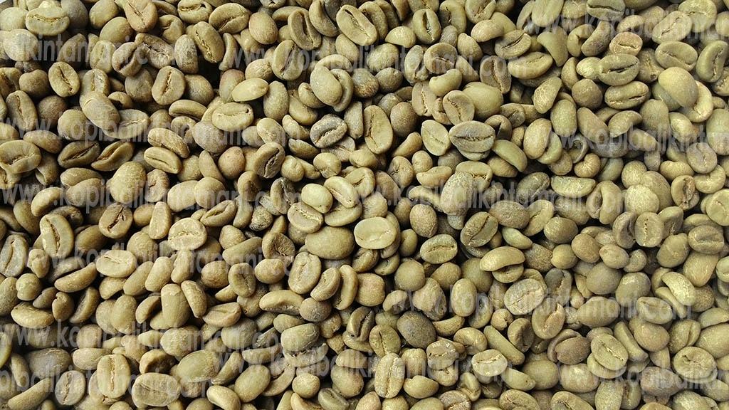 Biji Kopi Luwak Green Bean